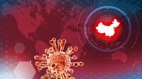 《新英格兰医学杂志》:埃博拉药迅速缓解武汉肺炎症状