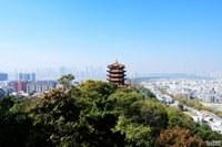 武汉的历史地位巧合或是安排?